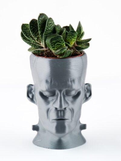 FRANKENSTEIN Halloween Succulent Plante