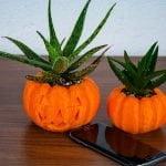 pumpkin_planter-06