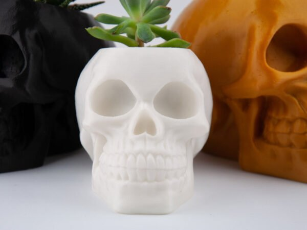Zoom Skull Planter