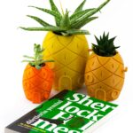 spongebob planter-03