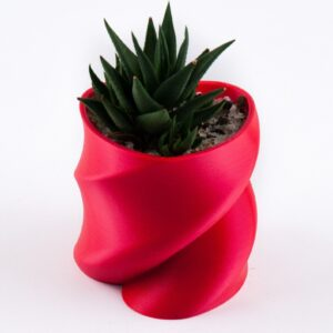 twisted heart succulent planter
