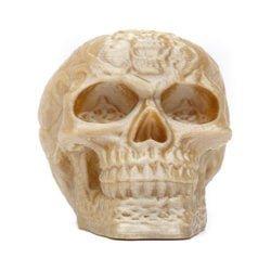 Glossy Fossil Bone